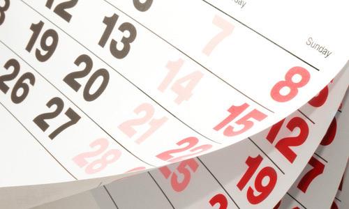Kalender Skatstadtbullen